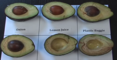 how to keep mashed avocado from turning brown